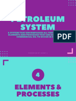 copy of petroleum system
