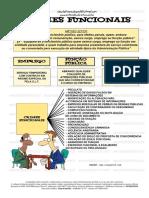 CRIMES FUNCIONAIS.pdf