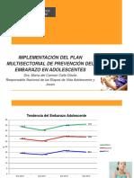 PMPEA_topicos.pptx