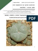 Cultivo Cactus Peyote SanPedro