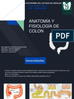 Anatomia y Fisiologia Colon Alistair