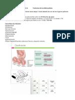 TEMA 14 trastornos de la estátatica pélvica