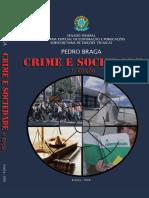 Crime e sociedade brasileira.pdf