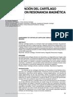 clasif. cartilago art, RM.pdf