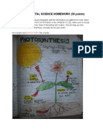photosynthesis infographic homework