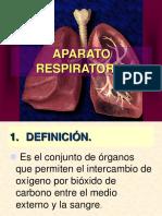 Sistema Respiratorio 3ero Renato