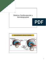 Sistema Cardiovascular y Hematopoyesis