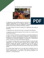 agriculturadelacostaecuatoriana-170126182241