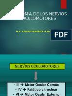 7 NERVIOS OCULOMOTORES