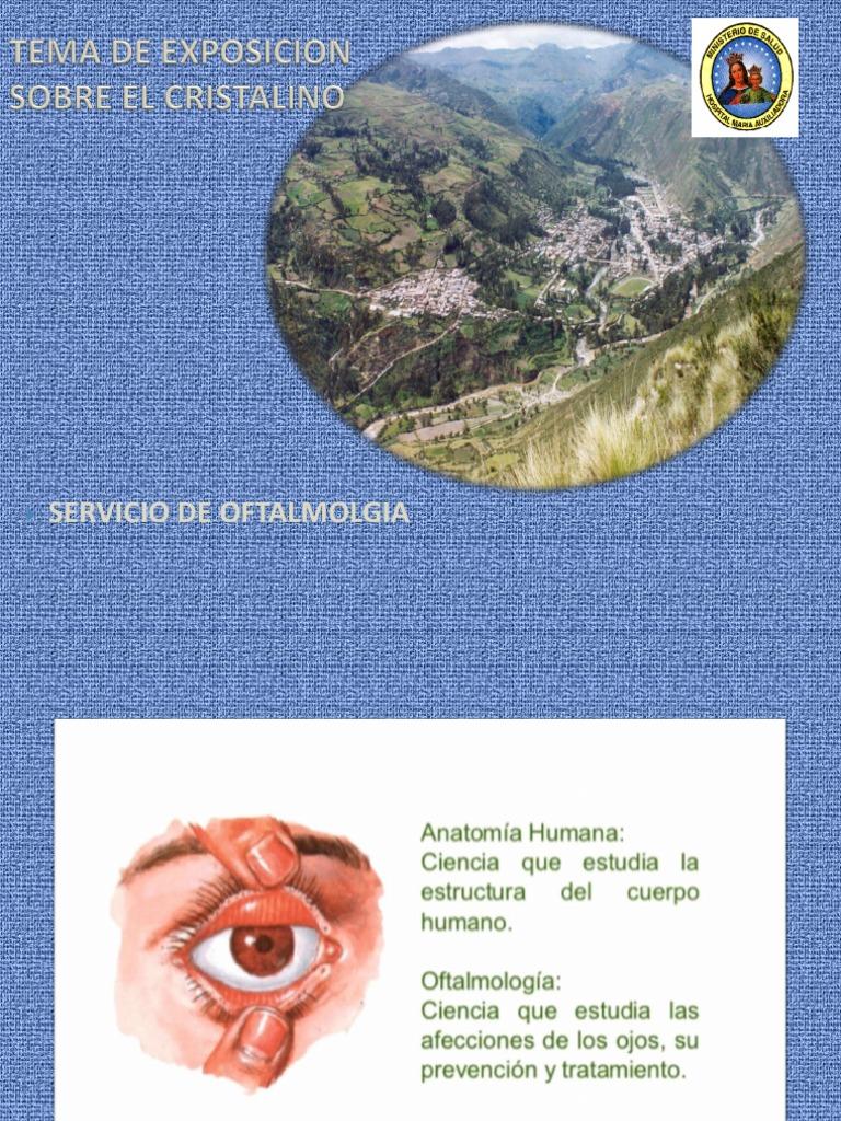 Moderno Anatomía Y Fisiología Del Ojo Pdf Patrón - Anatomía de Las ...