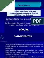 4.-CARBOHIDRATOS (2)