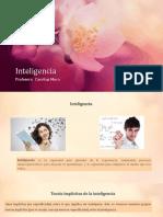 sternberg-13-inteligencia-nuevo.pptx