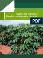 cultura da mandioca.pdf