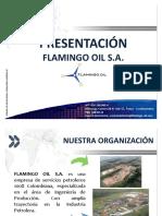 FLAMINGO_OIL.pdf