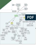 MAPA_Desenvolvimento_Piaget_2.pdf