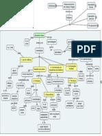 MAPA Desenvolvimento Piaget 1
