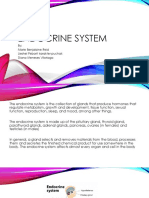 Endocrine System 2017