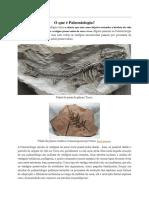 O Que é Paleontologia