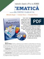 flyer matematica singer.pdf