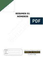 3928-Resumen 01 (7%)