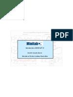 Manual Minitab.pdf