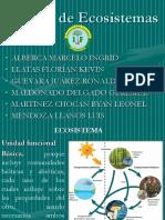 ManejodeEcosistemas Expo (1)