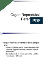 Anatomi Sistem Reproduksi Wanita.pdf
