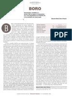Boro.pdf