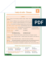 Bio-Chapter2-Study of Cells - Tissues