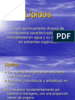 digestion, absorcion lipidos.pdf