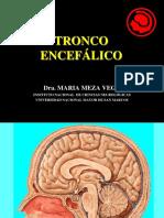 Docfoc.com 3. Tronco Encefalico