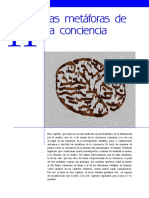 conciencia_capitulo_11.pdf