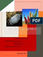 Informe Agropecuarias FINAL