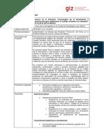 Descripación Puesto - Asesor/a  Proyecto TIC-A de la GIZ en México