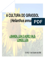 jornadas_tecnicas_Girassol