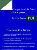 Seminario 06 Sangre. Médula Osea y Hemocitopoyesis Javier 2016