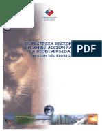 articles-48847_EstrategiaRegionalBiodiversidadPDA_8.pdf