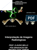 CURSO- INTERPRETAÇÃO DE IMAGENS  I.pdf