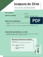 Ficha Nº 4 Los bosques de Chile y su utilización