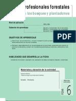 Ficha Nº 6 Los profesionales Forestales