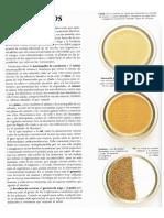 Tipos de aderezos y beneficios.pdf