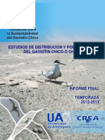Informe Final Gaviotin 2012 2013