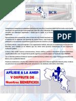 Boletin ANEP-BCR Agosto 2017
