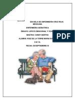 ENFERMERIA GERIATRICA (1)