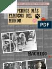 LOS PERROS MÁS FAMOSOS DEL MUNDO-Luciana Márquez.pptx