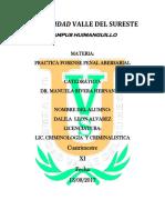 Universidad Valle Del Sureste