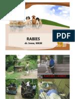 rabies.pdf