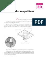 ensa20, Partículas magnéticas.pdf
