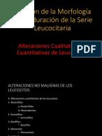 2 Revision Morfologia Leucocitaria