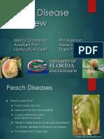 Peach Diseases